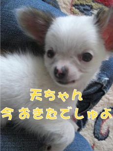 f0170966_19142542.jpg