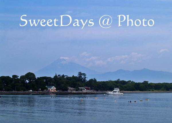 Mt.Fuji_e0046675_16194477.jpg
