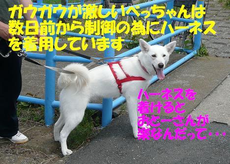 f0121712_15185456.jpg