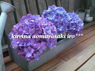 f0049124_758312.jpg