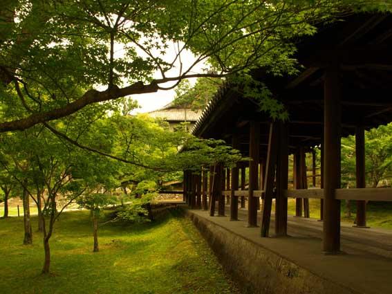 東福寺‐Ⅰ_d0149245_2341358.jpg