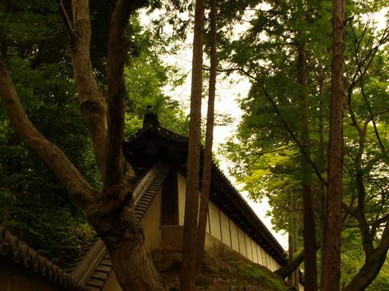 東福寺‐Ⅰ_d0149245_234323.jpg