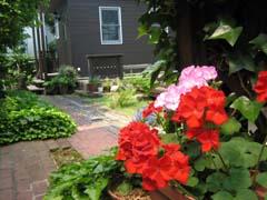 最近の庭は・・・_c0038347_209463.jpg