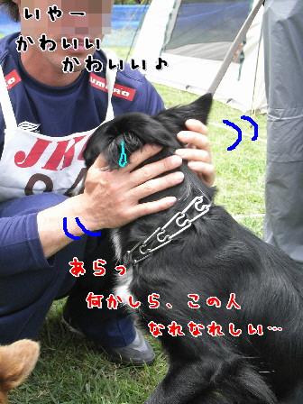 d0013149_10115653.jpg