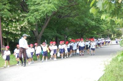 箱作小学校2年学習サポート…箱作自然海岸(西浜)_c0108460_16553262.jpg