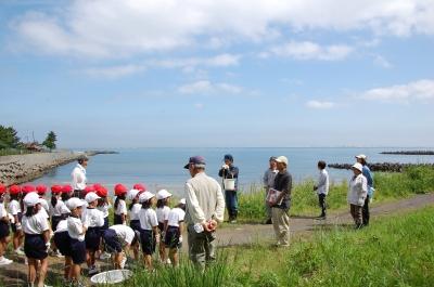 箱作小学校2年学習サポート…箱作自然海岸(西浜)_c0108460_1656195.jpg