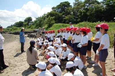 箱作小学校2年学習サポート…箱作自然海岸(西浜)_c0108460_16573080.jpg