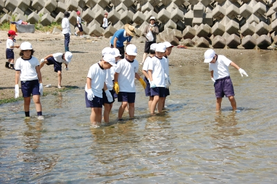 箱作小学校2年学習サポート…箱作自然海岸(西浜)_c0108460_16581431.jpg