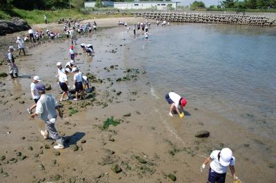 箱作小学校2年学習サポート…箱作自然海岸(西浜)_c0108460_16583771.jpg