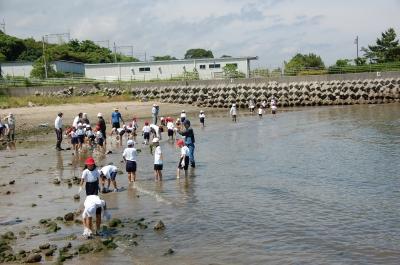箱作小学校2年学習サポート…箱作自然海岸(西浜)_c0108460_16595642.jpg