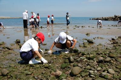 箱作小学校2年学習サポート…箱作自然海岸(西浜)_c0108460_1701742.jpg