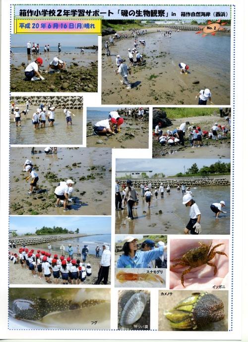 箱作小学校2年学習サポート…箱作自然海岸(西浜)_c0108460_17104320.jpg