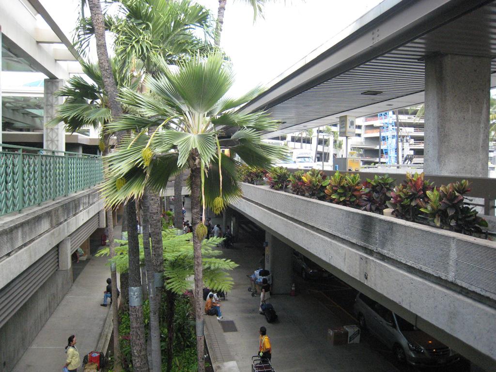 ハワイ旅行 その4_e0021092_1471872.jpg