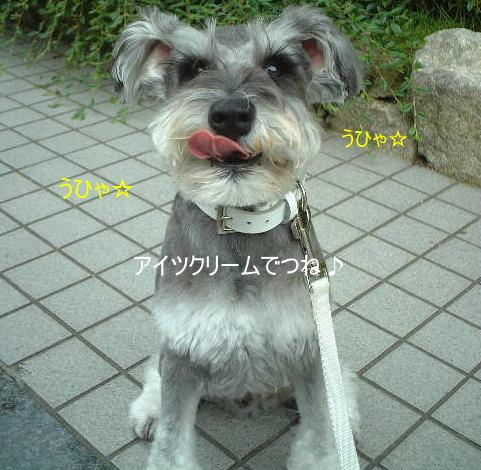 d0079701_2124725.jpg