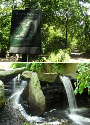 セントラルパークにある滝_b0007805_827429.jpg