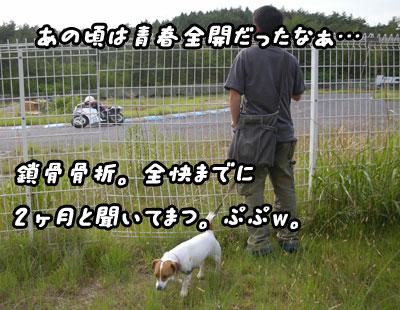 f0129214_12493218.jpg