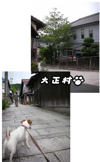 f0129214_13241815.jpg