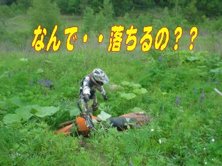 e0022736_11718.jpg