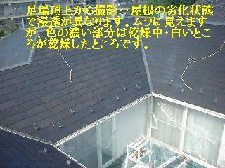 f0031037_18333938.jpg