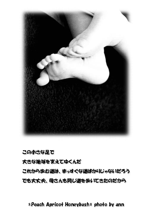 b0126044_12512590.jpg