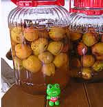 今年もやってきた杏の季節_e0130953_17431995.jpg