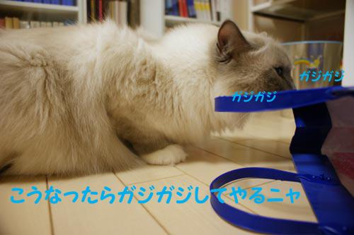 f0014893_22172648.jpg