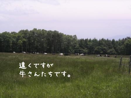 f0068501_2318189.jpg