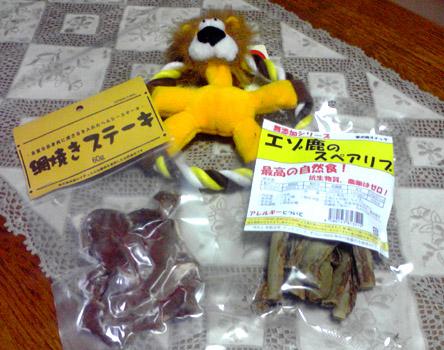 獅子丸5歳になりました〜!_a0044521_132753.jpg