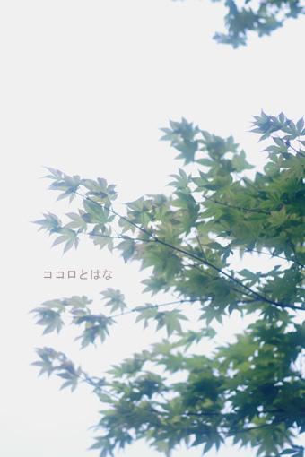 f0143059_12421798.jpg