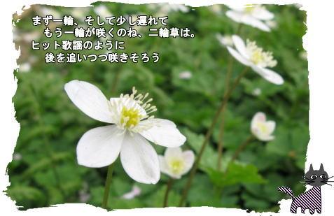 f0137096_19285372.jpg