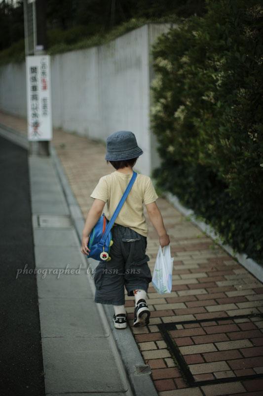 お散歩写真#7_c0121907_7335260.jpg