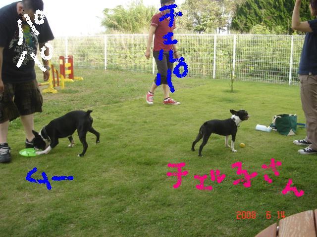 b0120415_13171836.jpg