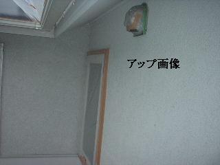 屋根塗装・完成_f0031037_19144951.jpg