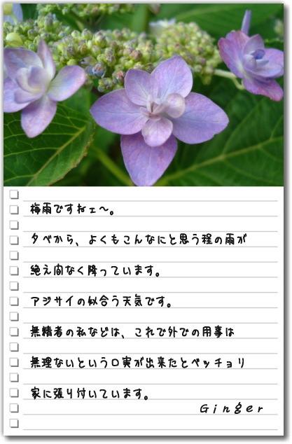 b0066947_1558342.jpg