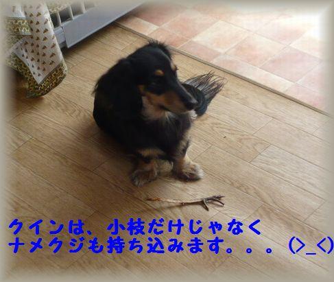 b0059087_2341968.jpg