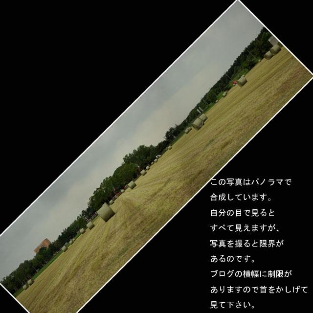 b0019313_144533.jpg