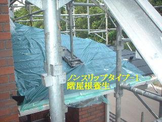 養生作業_f0031037_18531967.jpg