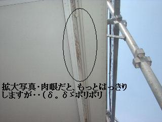 養生作業_f0031037_18554611.jpg