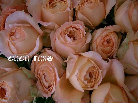 バラがテンコ盛りです・・・_c0130553_194327100.jpg