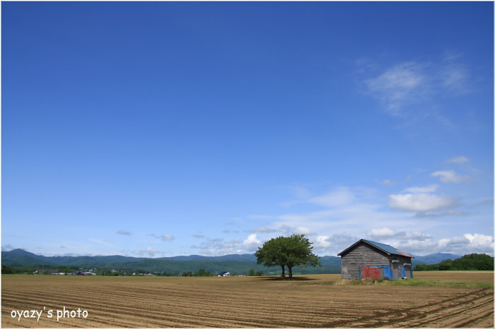 空は青が良い_a0071514_2133590.jpg