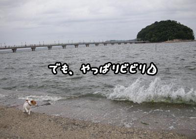 f0129214_011976.jpg