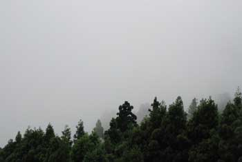 """Foggy Rokko Mountain Breakdown\""_e0103024_21561853.jpg"