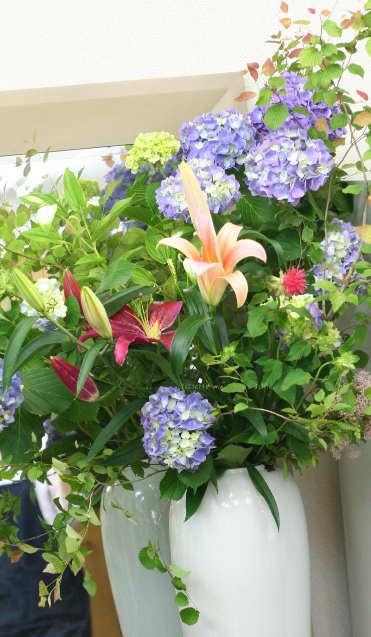 単発生花レッスン 7月10日 花瓶に活ける初夏の花報告_a0042928_21462694.jpg