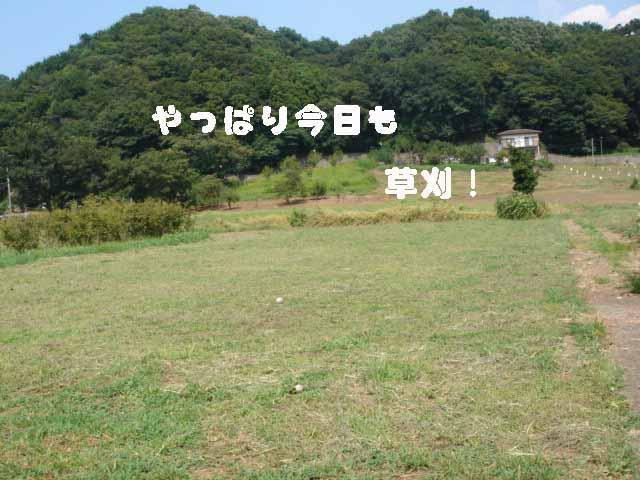 f0137544_19594059.jpg