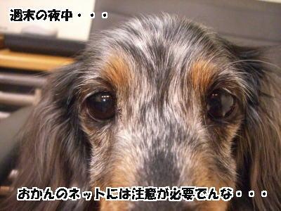 d0020869_1745591.jpg