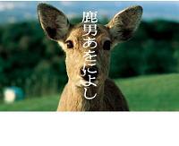 【日記】鹿男あをによしを見る_d0057574_16171681.jpg
