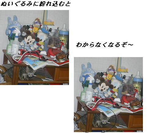 b0112380_18474317.jpg