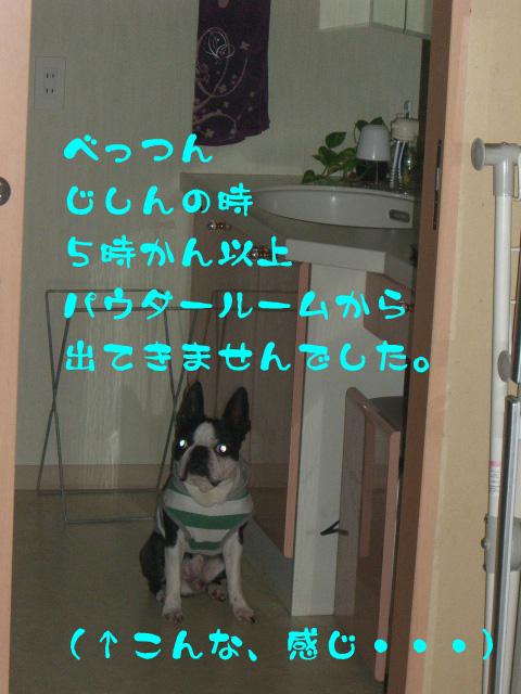 c0122897_1714051.jpg