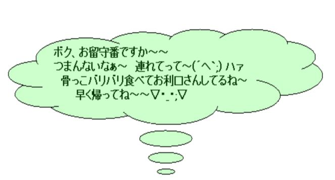 f0176499_1053467.jpg