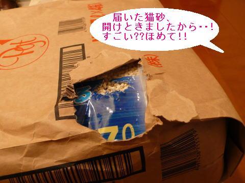 c0096628_20105217.jpg